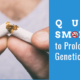 Quit Smoking to Prolong Your Genetic Legacy