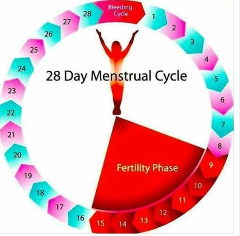 fertility centre in Pune