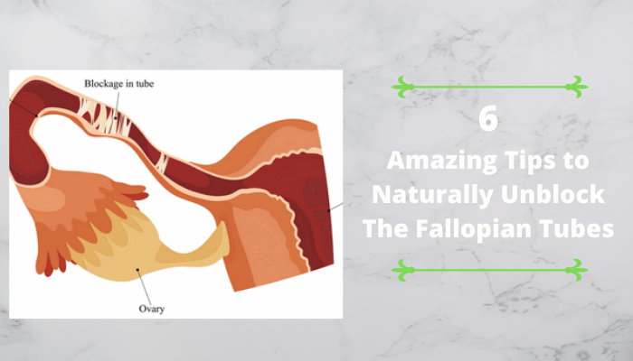 6 Amazing Tips to Naturally Unblock The Fallopian Tubes